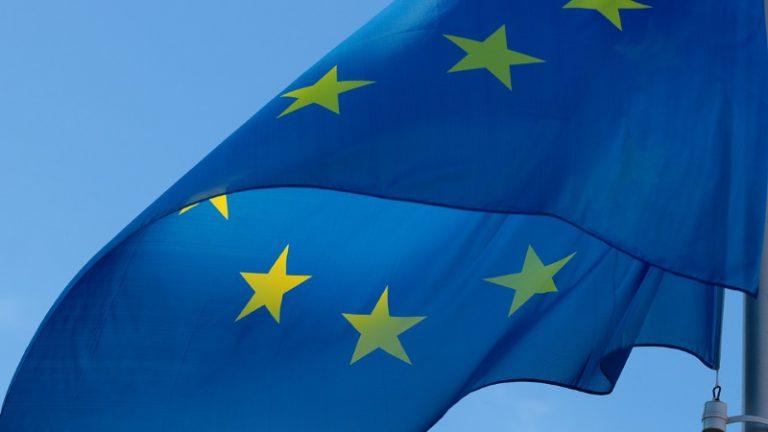 EU-Wahl: Welche Stellung beziehen die Parteien zum Klimaschutz?