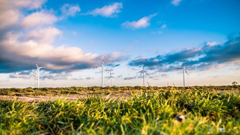 Rekord: Erneuerbare Energien liefern im ersten Halbjahr 44% des Stroms – Ausbau geht jedoch noch zu langsam voran
