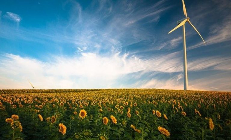 Tag der Erneuerbaren Energien 2021 – Status Quo