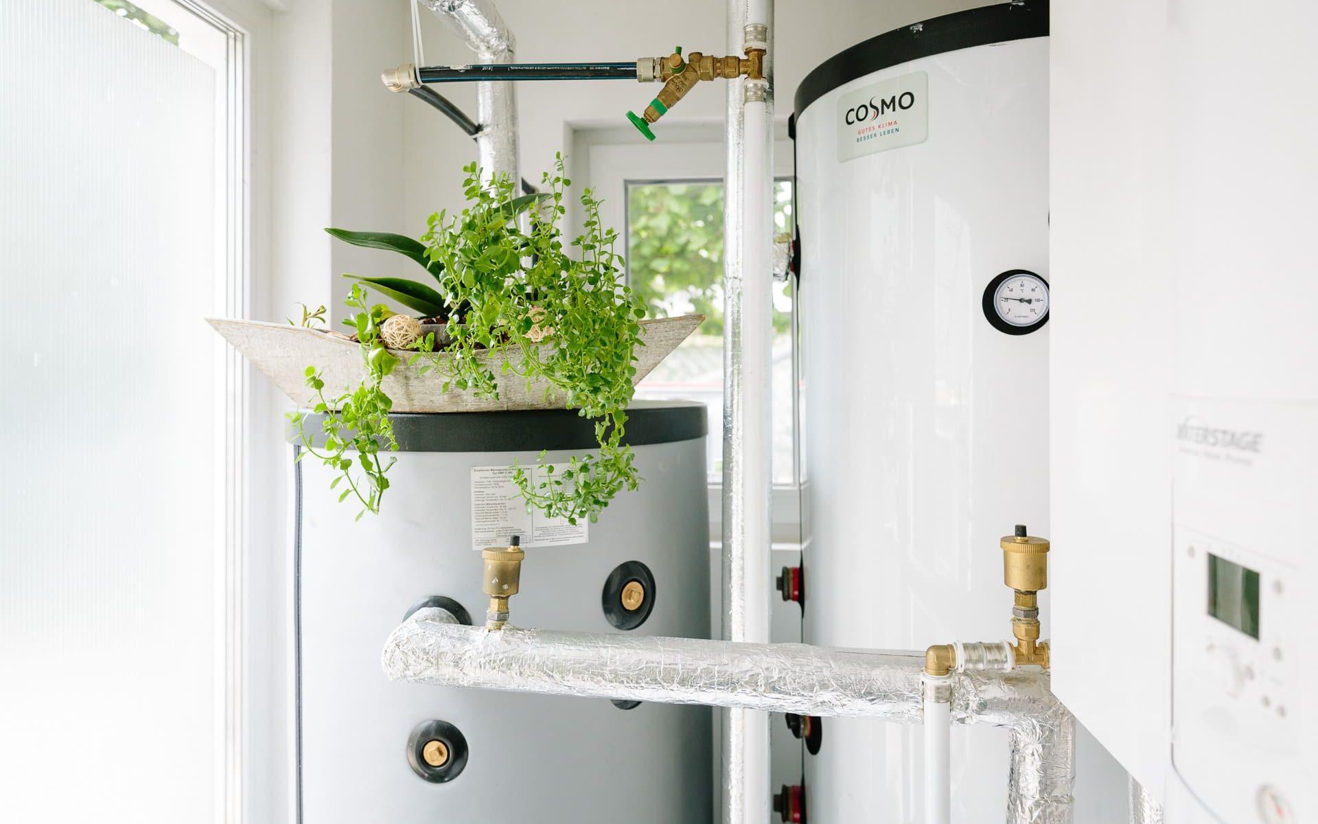 Pufferspeicher mit Pflanze und Wärmepumpen-Inneneinheit im Hauswirtschaftsraum