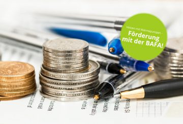 coins-currency-investment-insurance-stoerer
